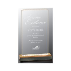 Reflection acrylic ice top award with gold highlights.