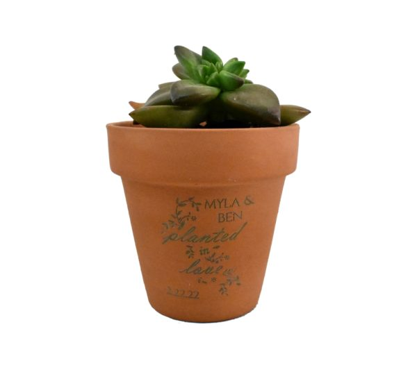 Planted In Love Engraved Terra Cotta Pot Wedding Favor